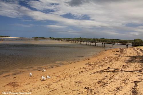 bridge beach river footbridge australia lagoon nsw picnik bdi urunga midnorthcoast australianbridges bellingerriver kalangriver urungalagoonfootbridge