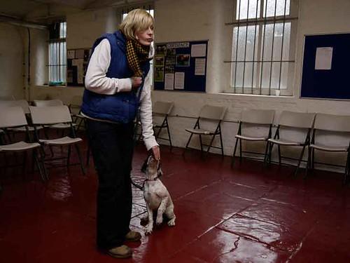 January Day Puppy Class | by Chadkirk Dog Training Club
