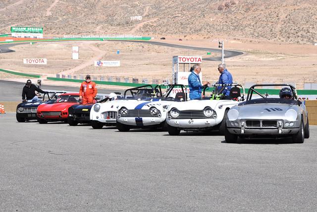 Triumph grid 7