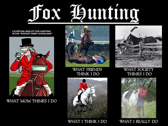 FoxHunting_WhatIThinkIdo