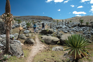 Bale mountains | by Petr Meissner