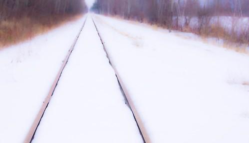 snow dream tracks