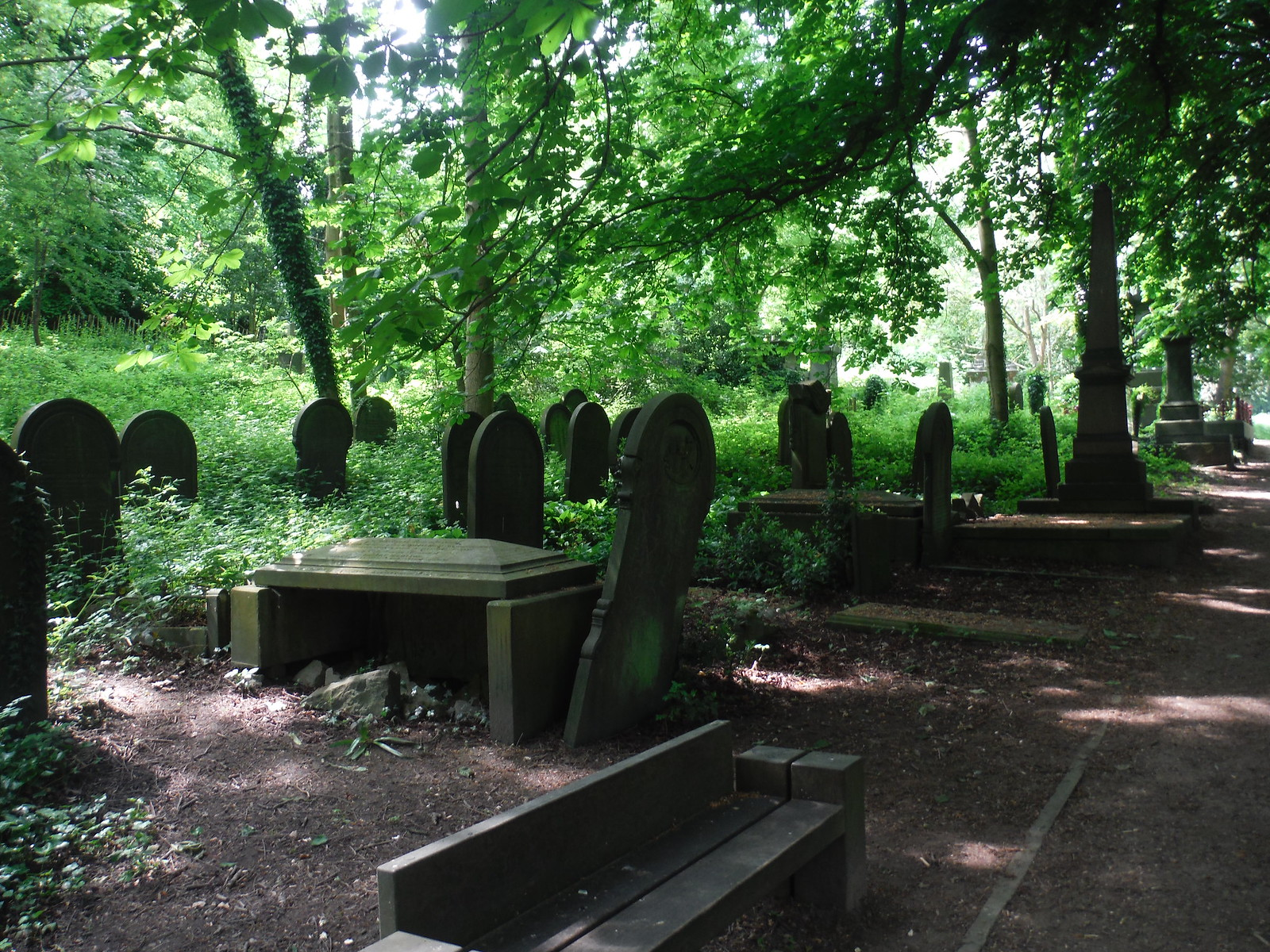 Sheffield General Cemetery SWC Walk 266 - Sheffield to Bamford (via Burbage Rocks and Stanage Edge) or to Moscar Lodge