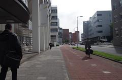 Marten Meesweg, Rotterdam