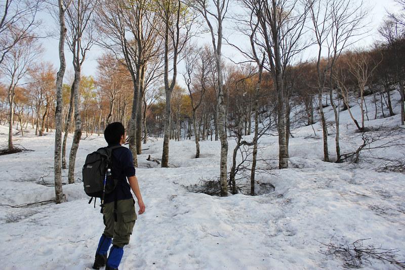 20120520_巻機山_0032