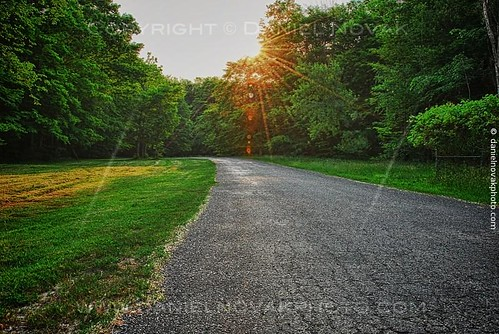 road park light sun green nature sunrise woods local rays orchardpark countypark chestnutridge