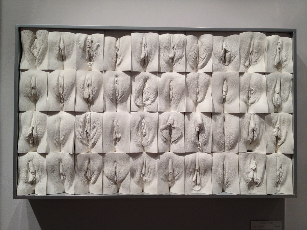 the great wall of vulva