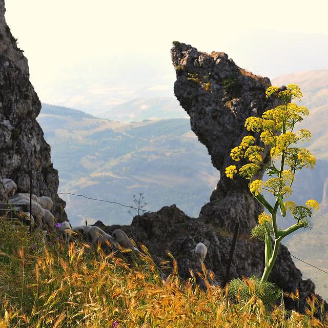 034 Caltabellotta (Sicily)