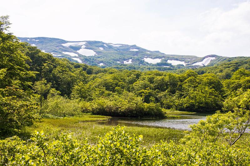 20160611-焼石岳-0826.jpg