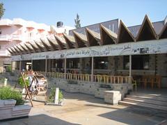 Sinai Rest Stop