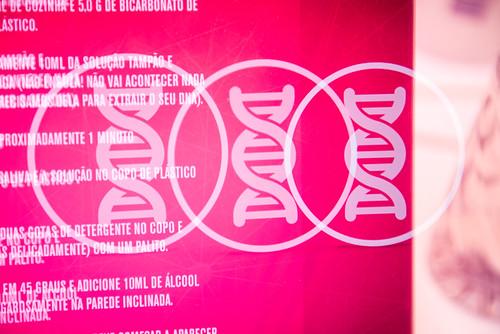 Oficina - Genômica: extraindo DNA do morango e de sua saliva | by olabimakerspace