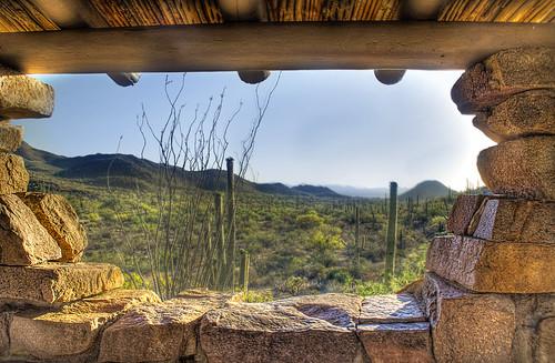 arizona cactus cacti hdr saguaronationalmonument