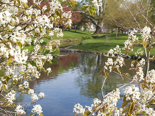 Congress Park - Saratoga