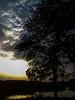 SunSET by Ashif Hassan