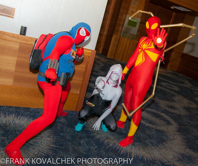 Cosplayer(s) at the 2016 Phoenix Comicon