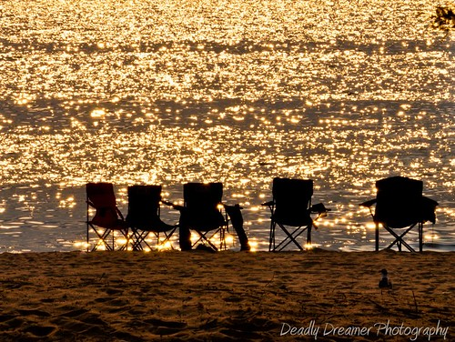 sunset colors chair seagull flash southbeach gulfcoast