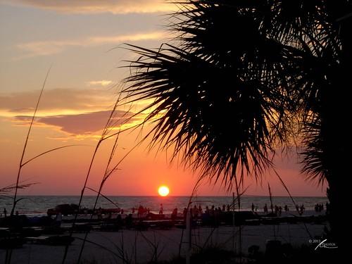 other flickr florida sunriseandsunsets