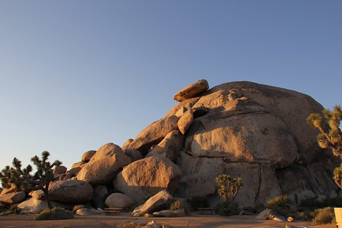 Joshua Tree National Park: Cap Rock | by jshyun