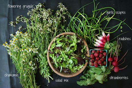market report 06.09.12 | by Megan | When Harry Met Salad