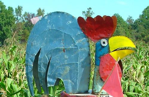 Bird in Corn Maze, Forrest Hall Farm, Mechanicsville