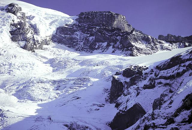 Another Mount Rainier View