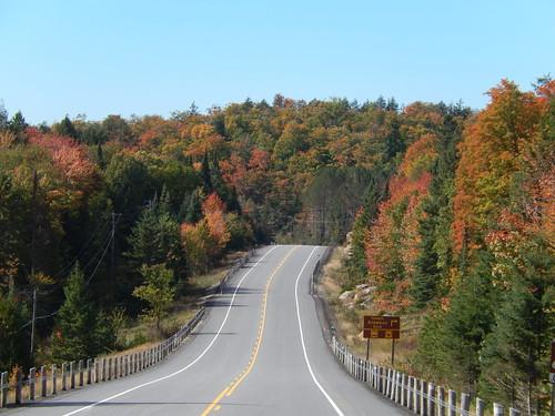 Algonquin PP - highway 60