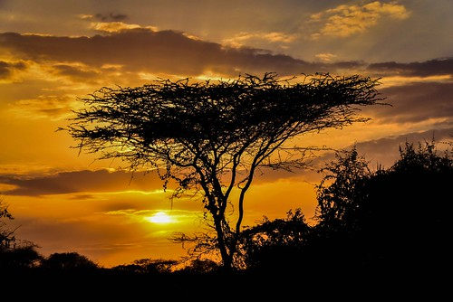 Turmi Rd Sunset, Ethiopia | by Rod Waddington