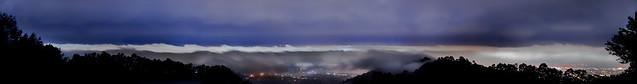 the big purple fog