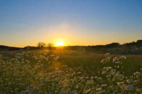 sunset sky sun sunlight flower nature fleur landscape ciel paysage coucherdesoleil pentaxk5