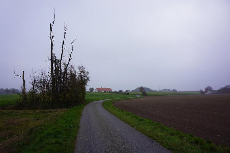 Kaedeby-Haver-efteraarsstemning-2015 (6)