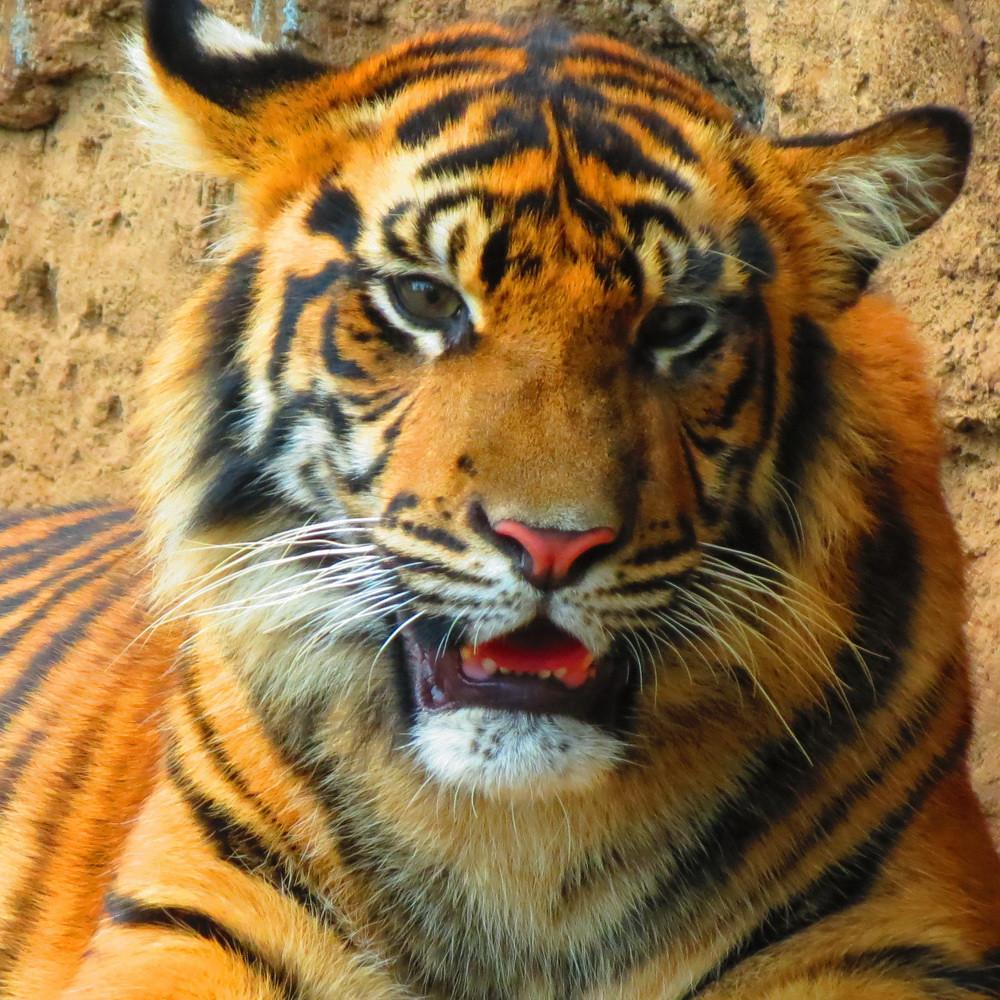 Kebun Binatang Bandung 031