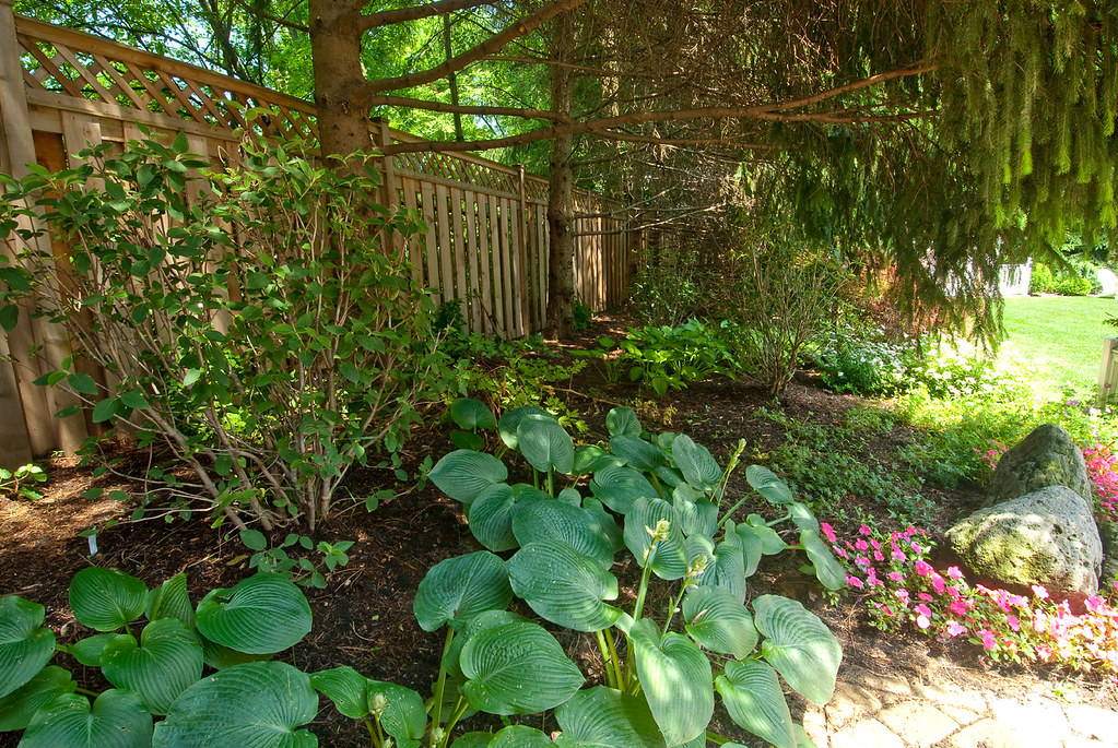 Shaded Garden Beds Shaded Garden Bed Dorie Roth Flickr