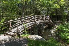 Minnewaska State Park - Wawarsing, NY - 2012, May - 18.jpg by sebastien.barre