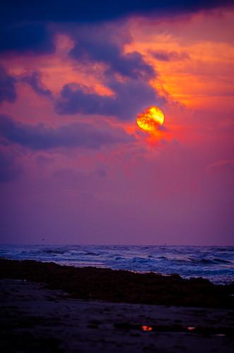 galveston beach sunrise landscape texas unitedstates crystalbeach