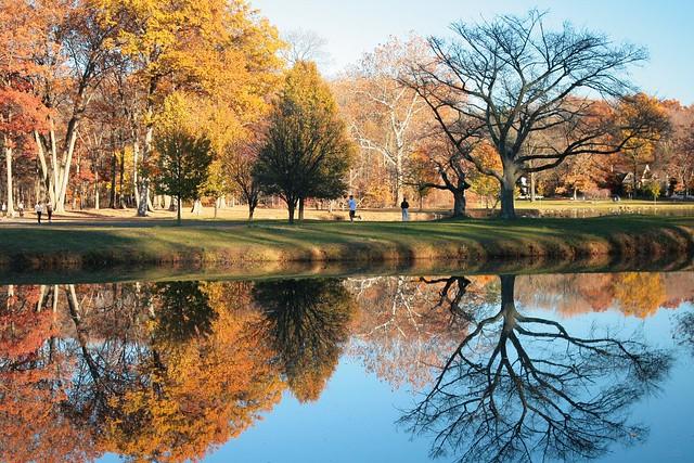 Mirror Fall