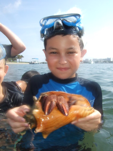 Owen with a Giant Hermit Crab!