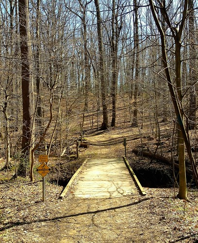 montgomeryco maryland blockhousepointtrail paths trails bridges trees shadows signs topf25
