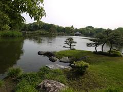 水, 2012-05-16 13:15 - 清澄庭園