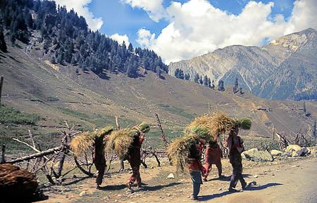 Kashmir 1988--02