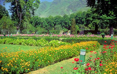 Kashmir 1988--39