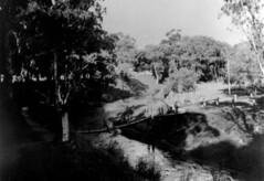 Goose Island Footbridge c1915