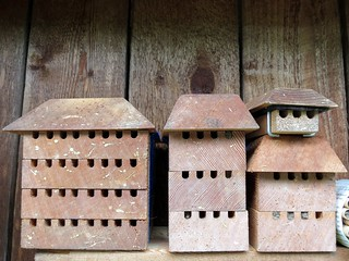 Mason bee houses | by Ruth and Dave