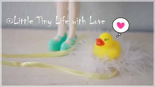 My Tiny Life with Love