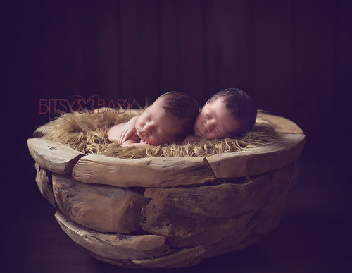 newborn twins photography MD | by Bitsy Baby Photography [Rita]