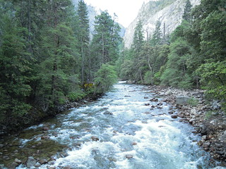 Hiking (and Climbing) Half Dome: The Merced River doing its pretty thing near the start of the trail   by mormolyke