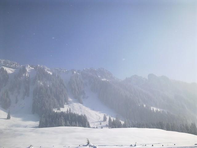Winter 2011-2012