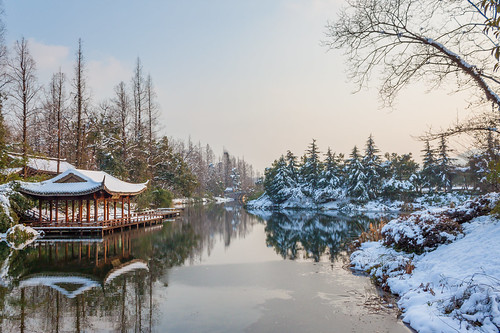 winter ecology ecosystem environment environmentalism land landscape nature river scenery seasons snow snowing water weather wintertime