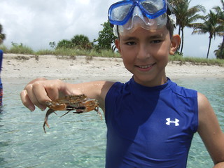 Robert with a swimming crab