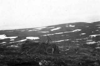 Kamuflert stilling ved grensen mellom Russland og Finland