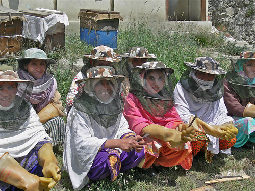 Rebuilding Plan Bee after the foods_Women Empowerment Honey Bee Farming_Gilgit (8) | by Hashoo Foundation USA - Houston, TX